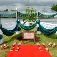 Memorial Plant